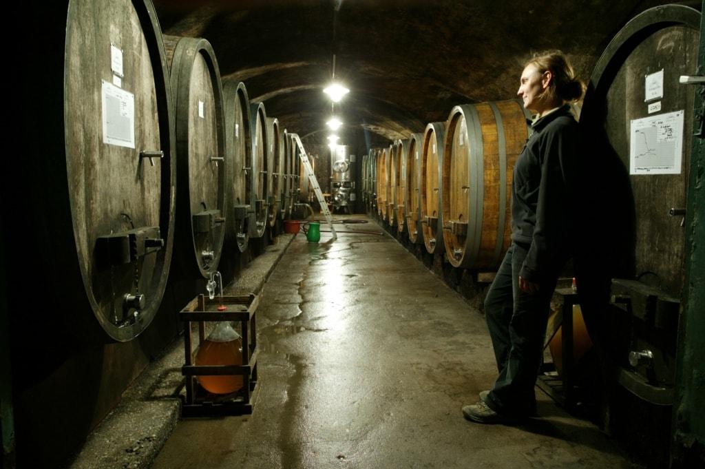 Frau im Schlosskeller des Weingut Diel
