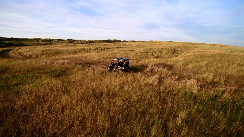 Ökosafari auf Ameland