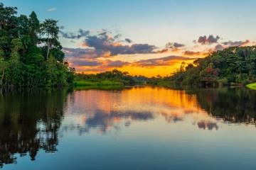 Fluss im Dschungel Guyanas