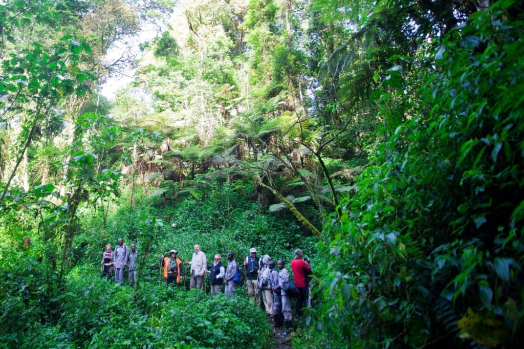 Touristen in Uganda