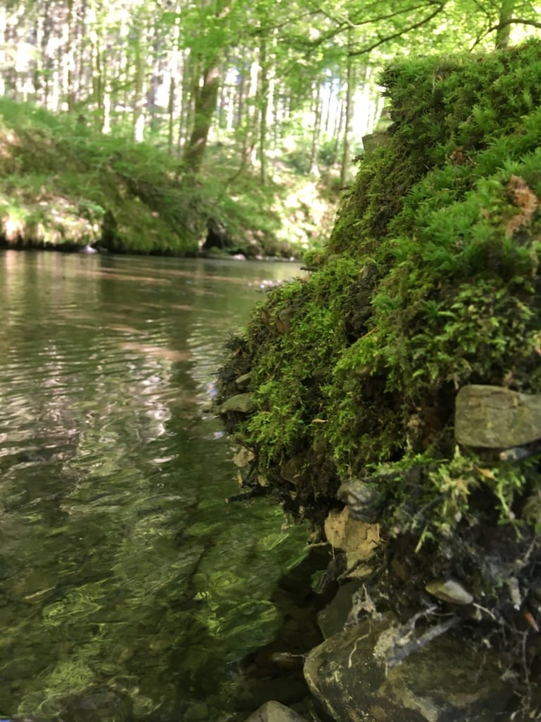 Eifgenbach im Bergischen Land