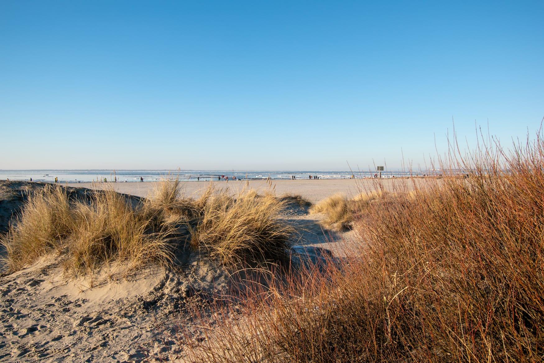 Strandurlaub mit Hund am Strand in Norden-Norddeich