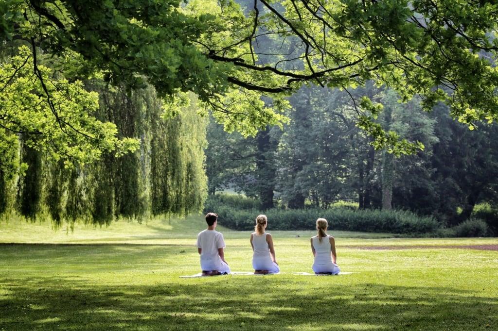 Yoga im Gräflichen Park