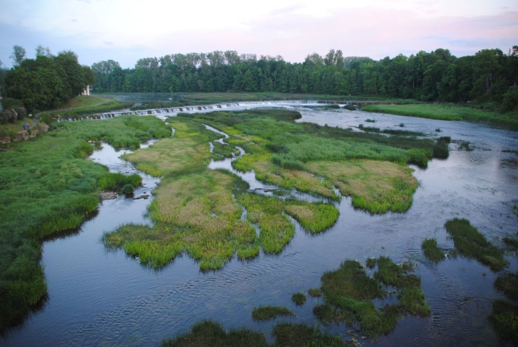 Natur im Baltikum