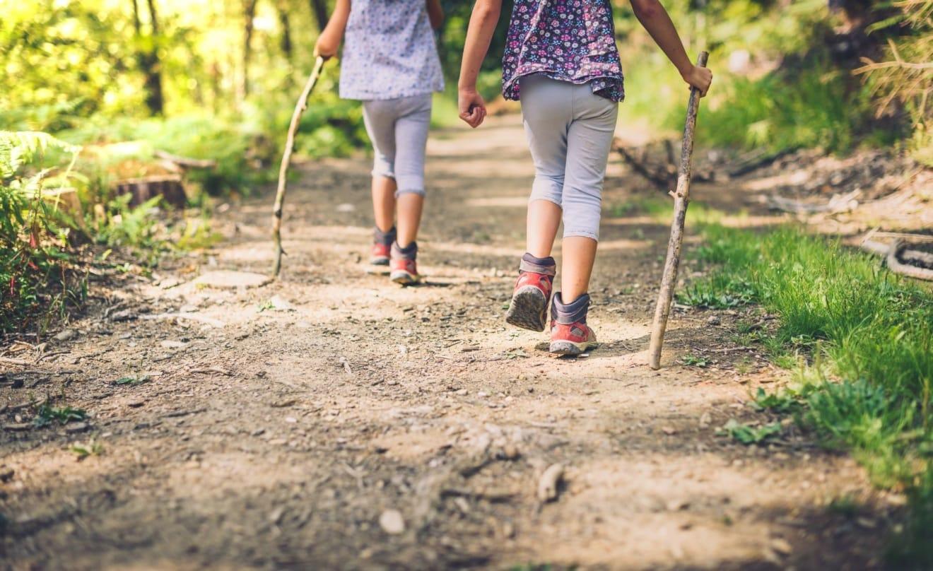 Kinder mit Stock im Wald beim Wandern