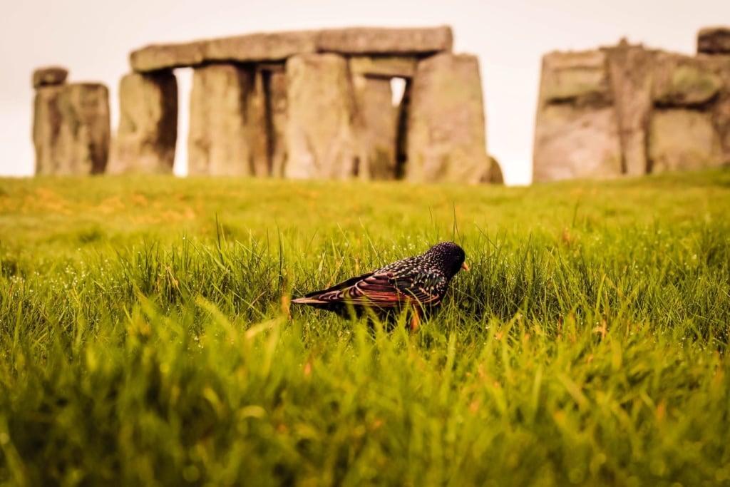 Unesco-Welterbestätte Stonehenge