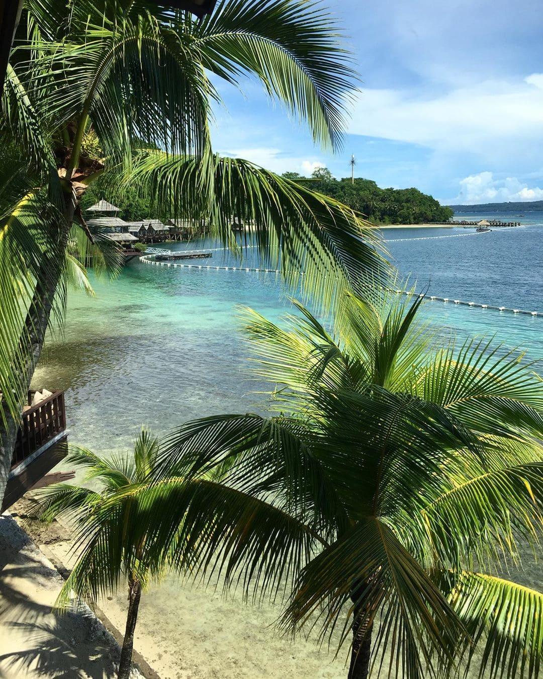 @marie.worldwild erkundet gerade für uns @qatarairways neues Ziel auf den Philippinen: Davao. Sie ist ganz angetan von diesem kleinen Paradies – wir sehen warum. #reportervorort #davaotogether #itsmorefuninthephilippines #philippines #mindanao #lifebythebeach #palmtreeseverywhere #passionpassport #traveldeeper #comewithme #davao #oceanlovers #welcometoparadise @qatarairways