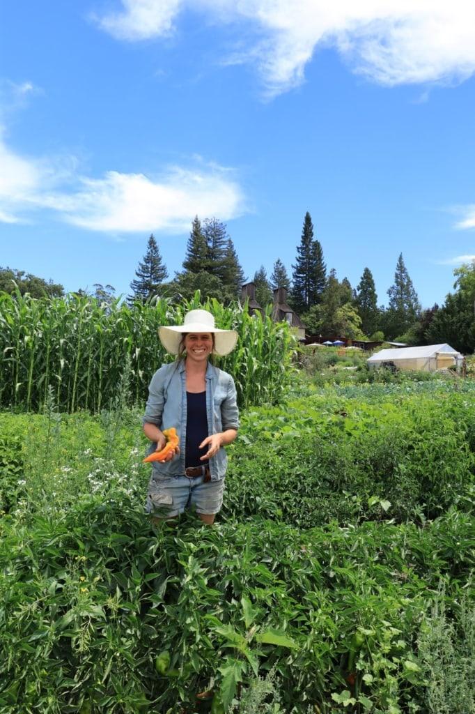 Gemüseanbauerin in Sonoma, Kalifornien