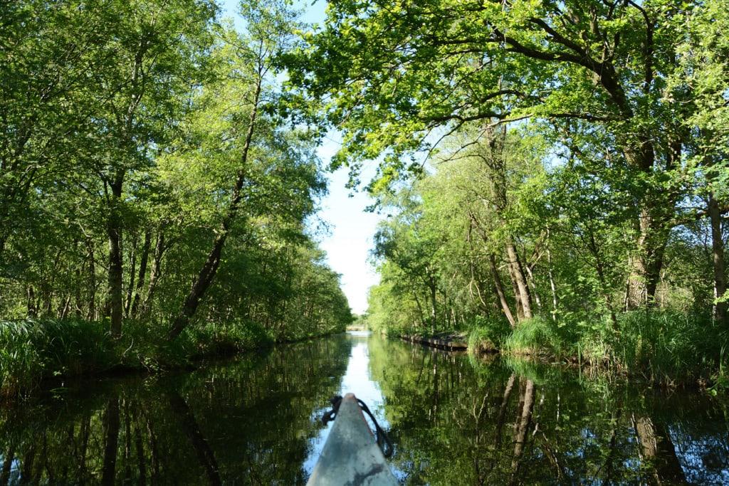 Aussicht aus dem Kanu in Holland