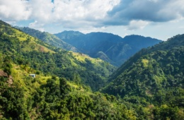 Blue Mountains in Jamaika