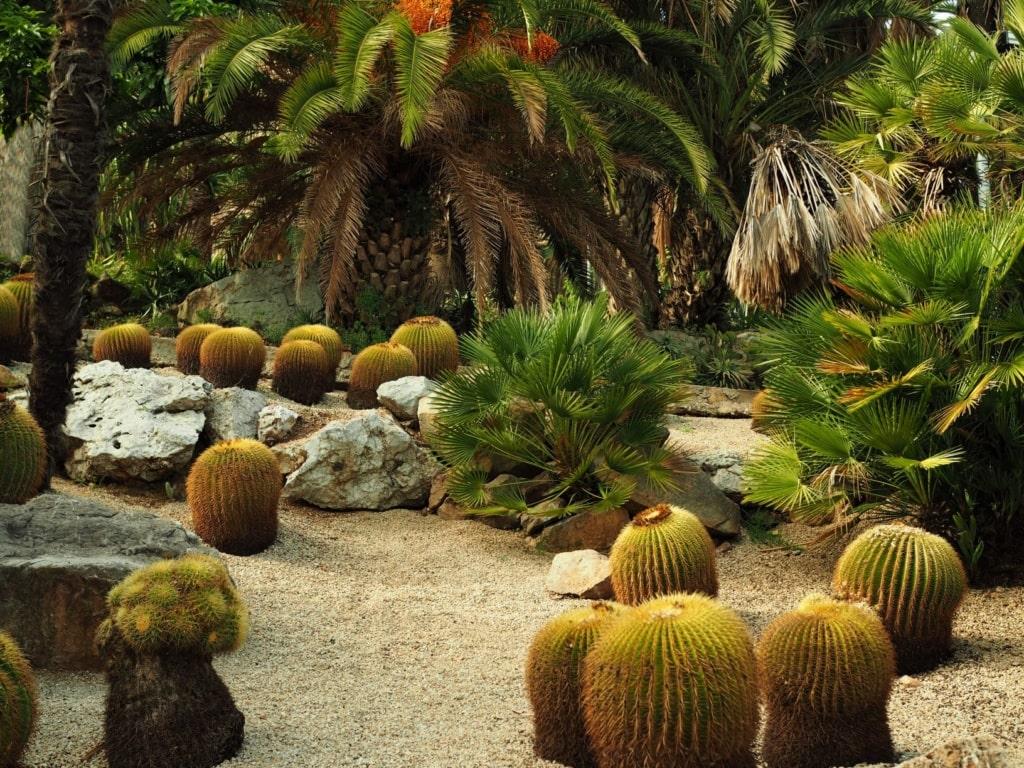 Jardi Botanic in Barcelona