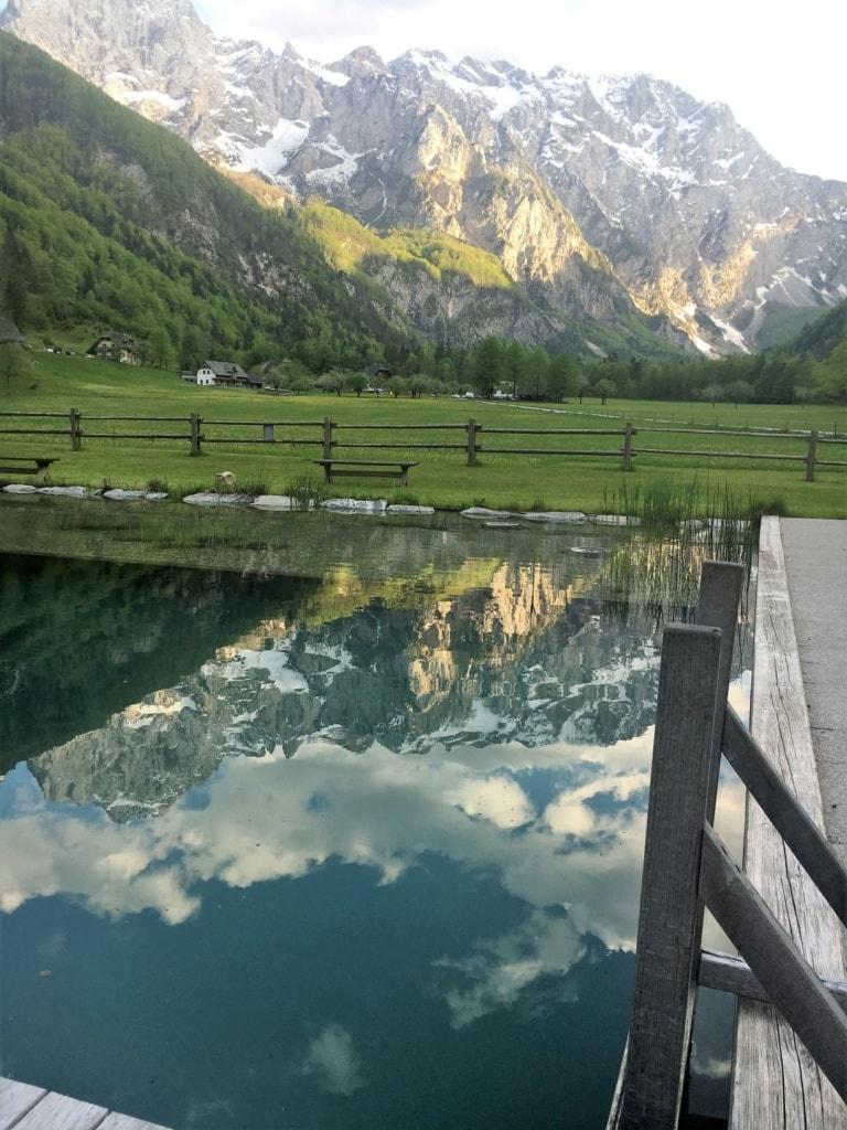 Naturpool Hotel Plesnik