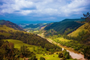 Whanganui River Landschaft