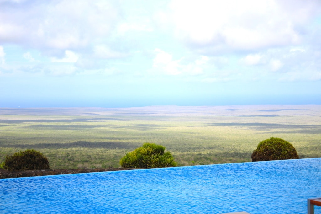 Der Pool in der Pikaia Lodge scheint in die wilder Landschaft der Galapagos zu fließen.