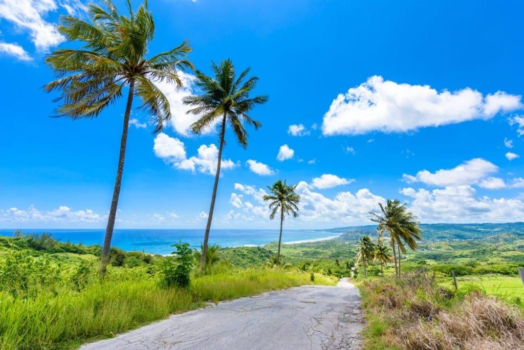 Straße auf Barbados