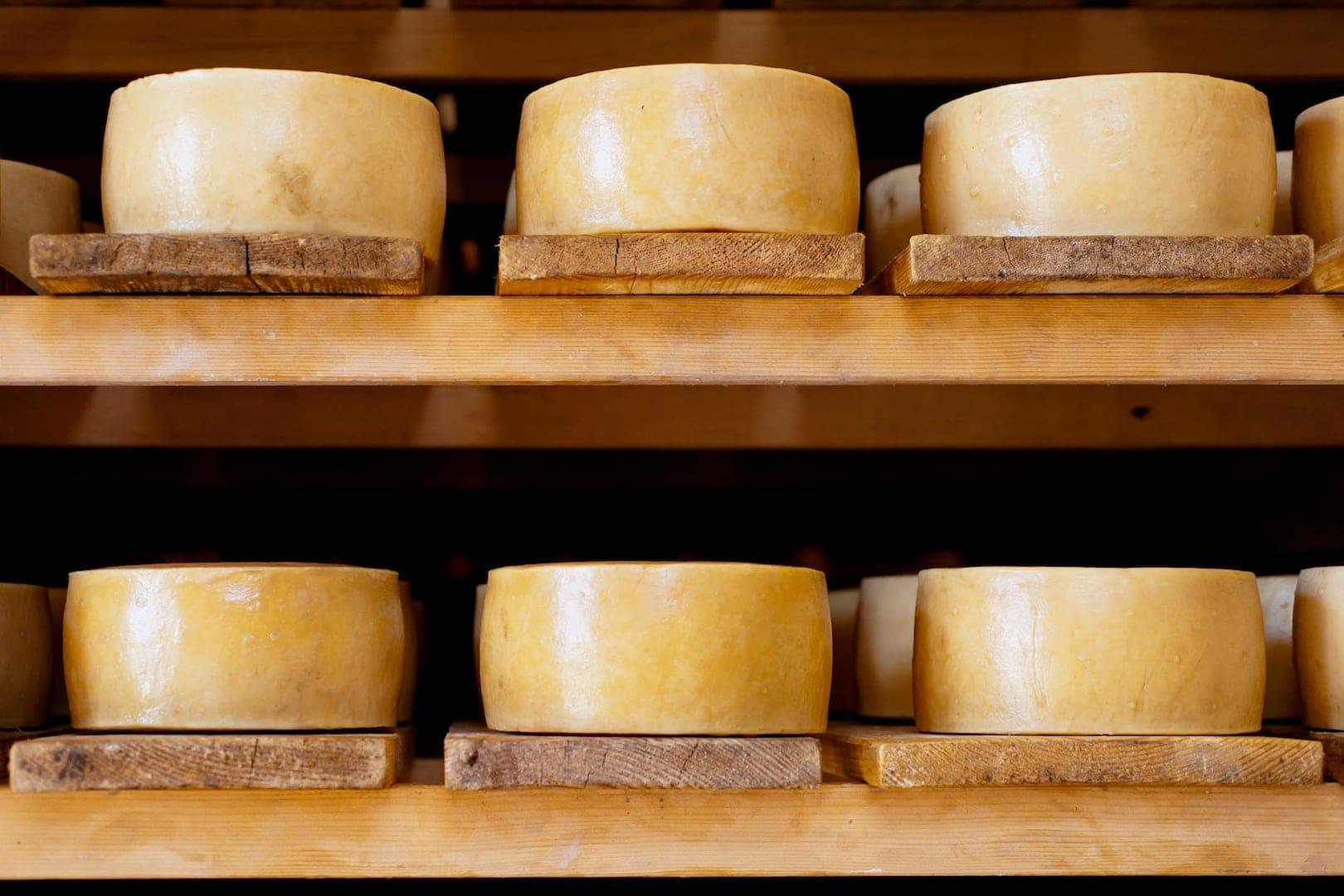 Kroatische Spezialität: Käse von der Insel Tag