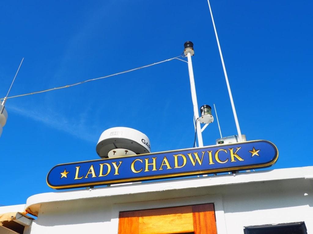 Lady Chadwick