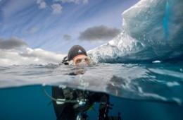Eisbergtauchen in der Antartkis