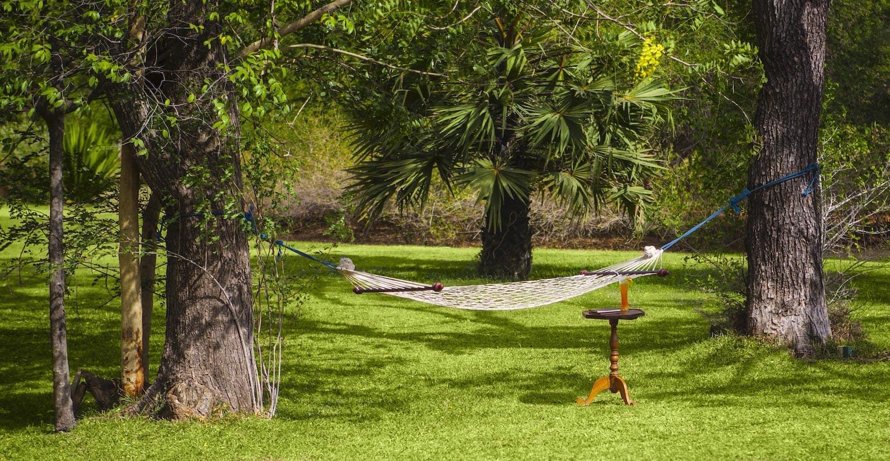 Hängematte zwischen zwei Bäumen auf grüner Wiese im Ulagalla by Uga Escapes