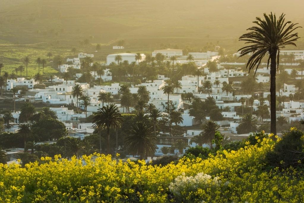 Urlaub auf Lanzarote: Haría im Norden Lanzarotes