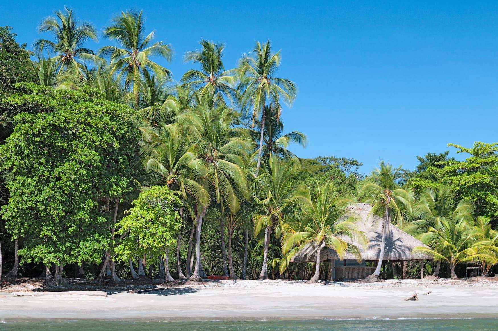 Insel im Golf von Chiriqui, Panama