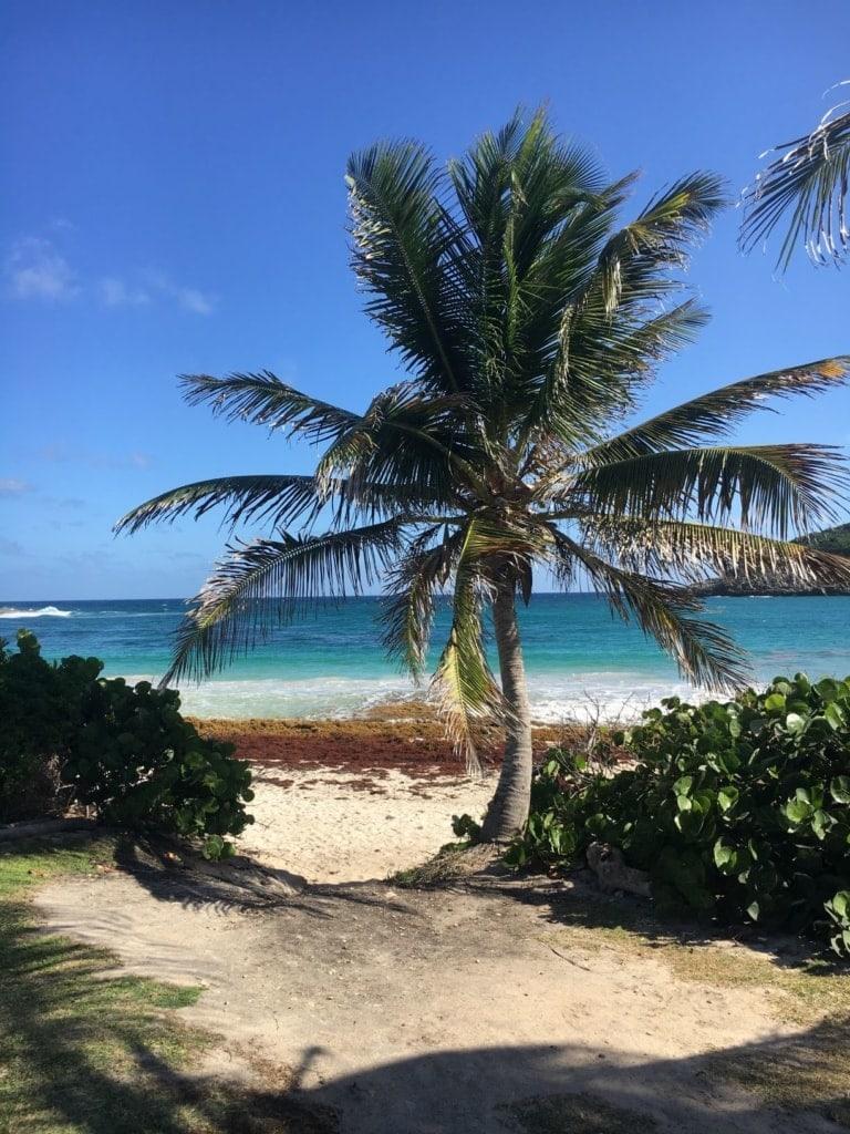 Half Moon Bay Strand auf Antigua