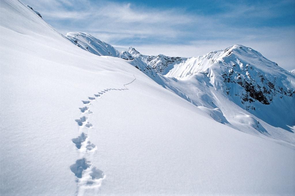 Ein Winterurlaub im Kleinwalsertal wartet mit tollen Erlebnissen in der Natur.