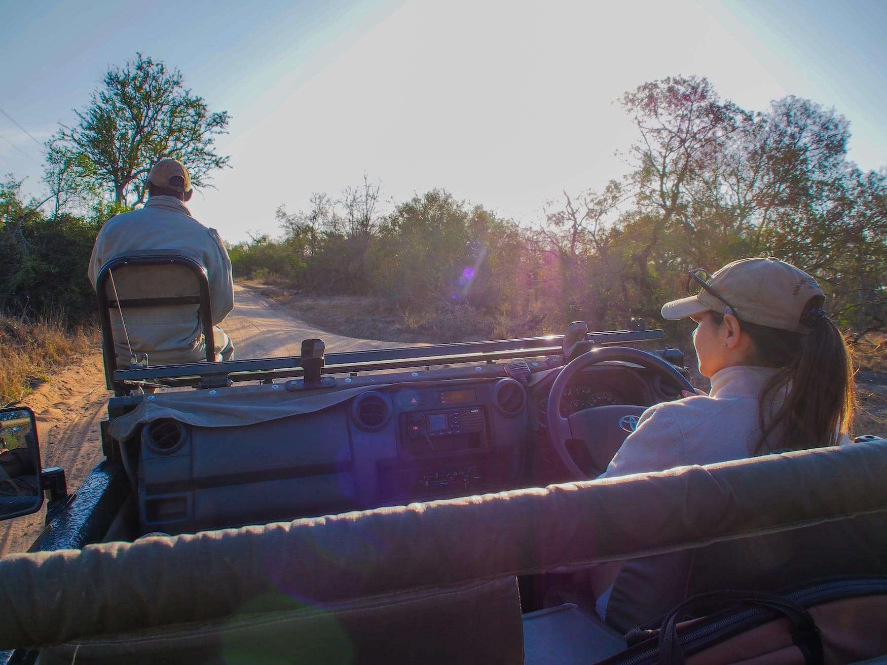 Safari, Jeep, afrika