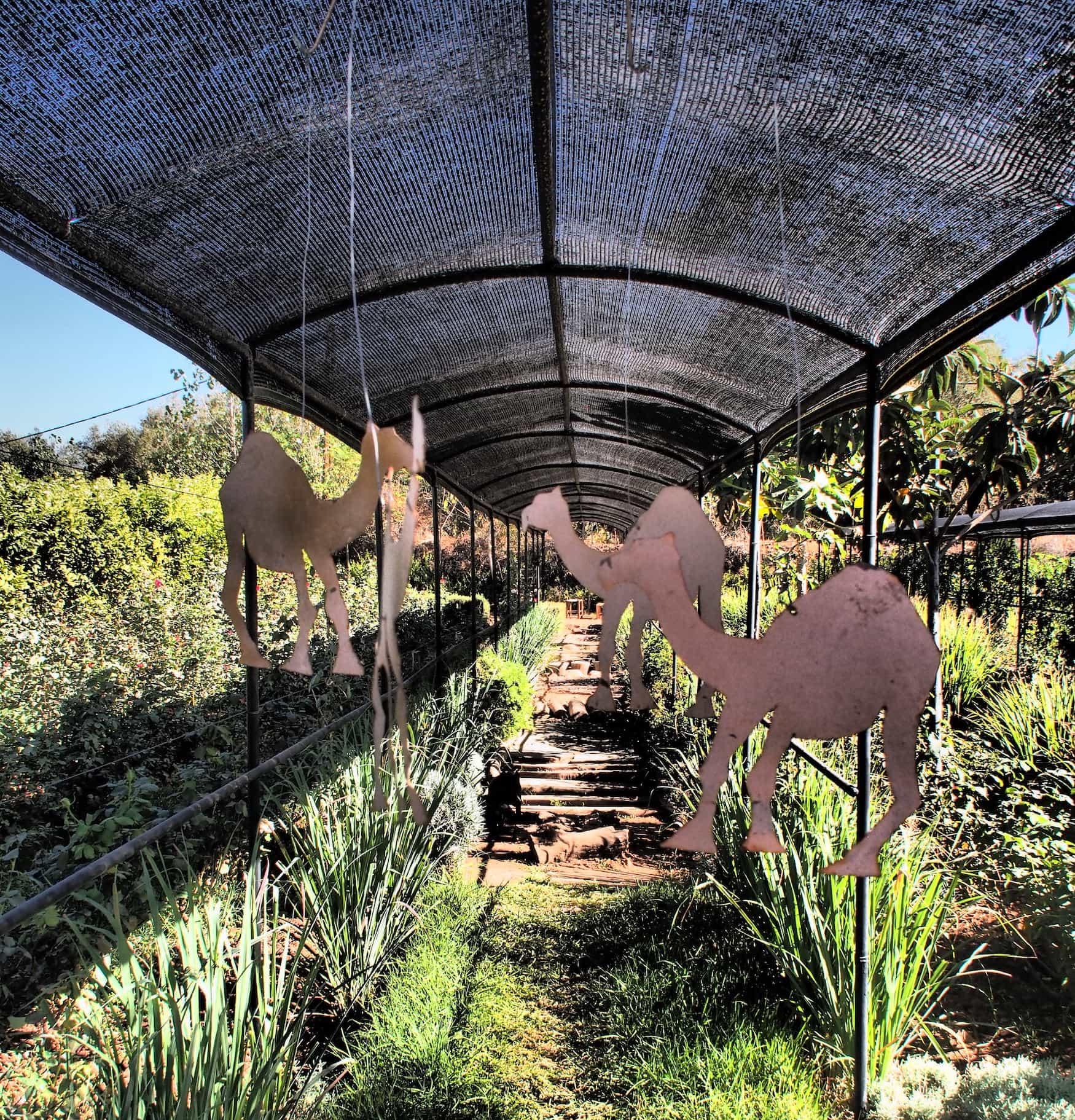 Paradise du safran - Marrakesch - Kreative