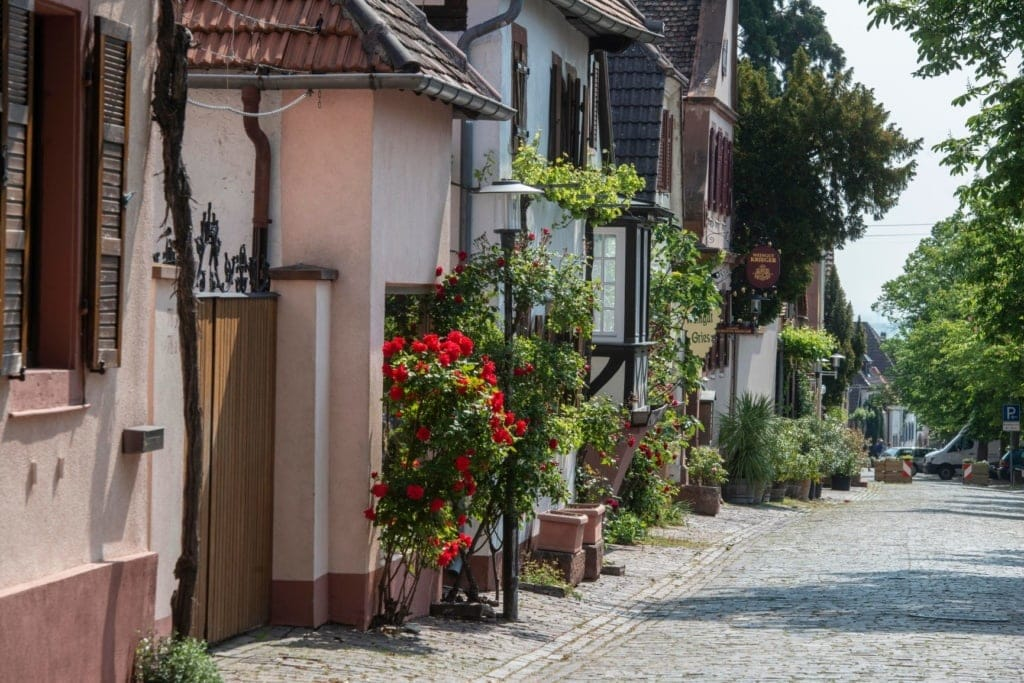 Straße im Ort Rhodt in der Pfalz