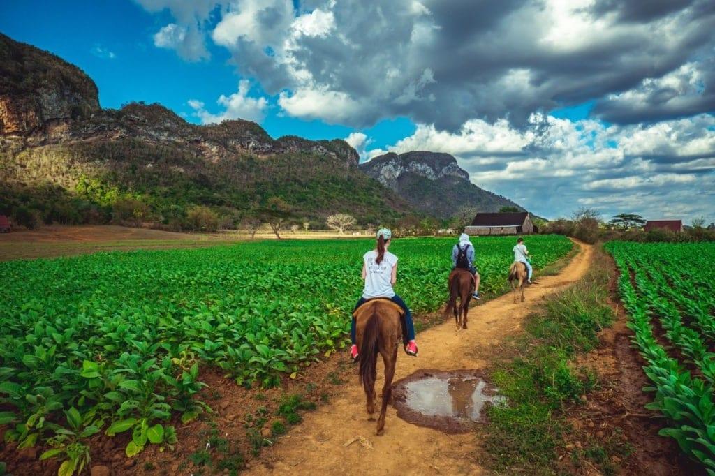 Touristen auf Pferden unterwegs in Kuba