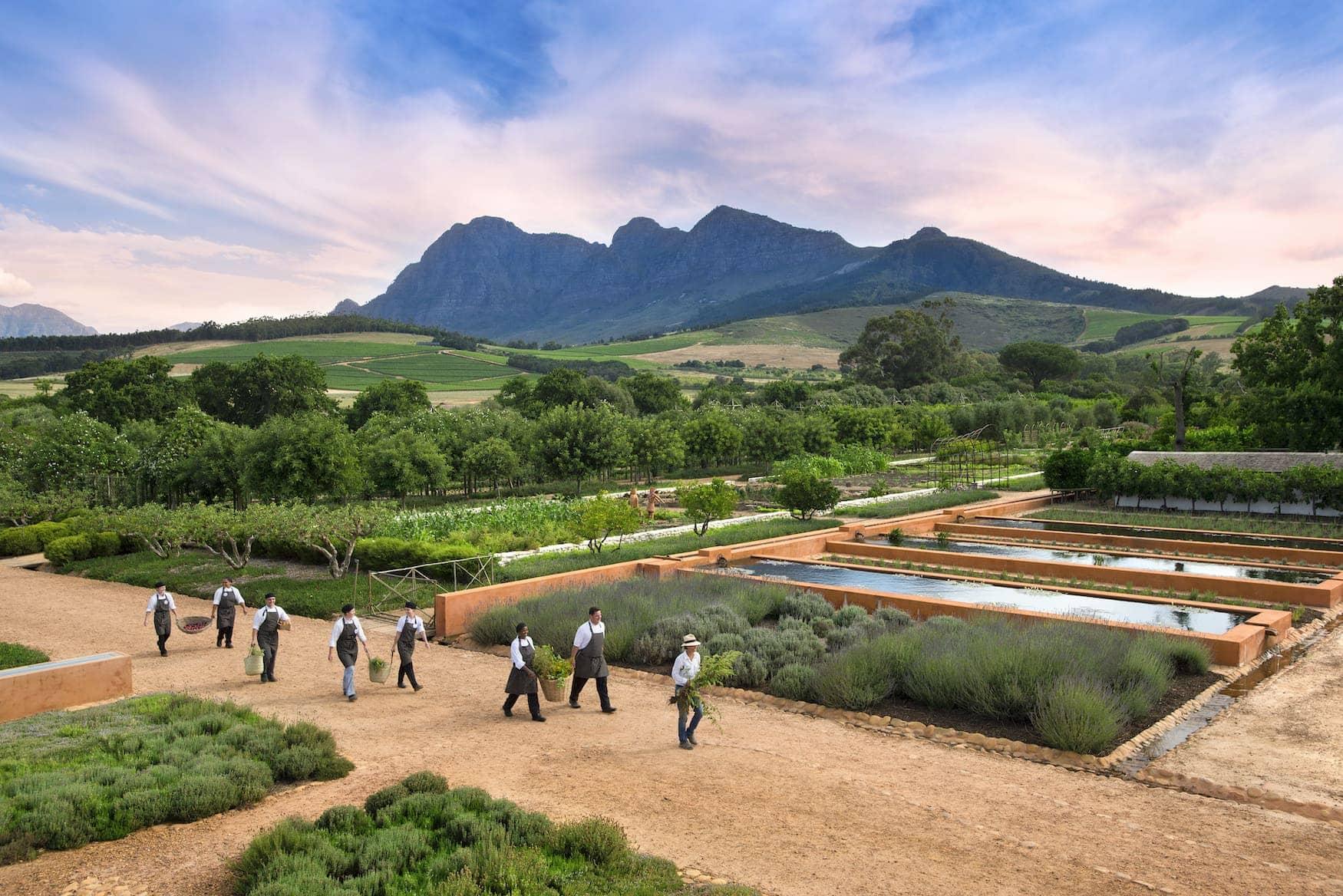 Farm-to-fork-Prinzip in Paarl, Südafrika