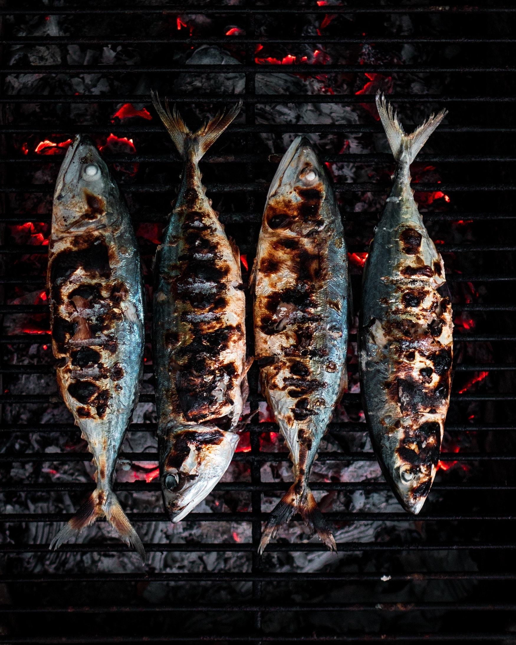 Hippes Dubai - Fisch essen