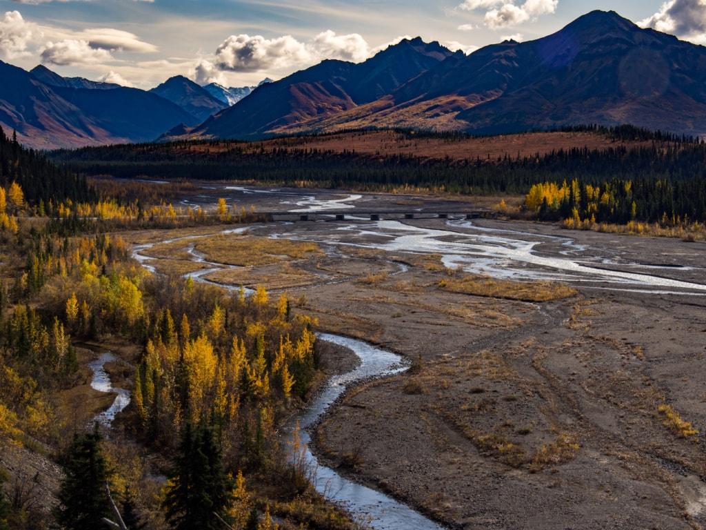 Jon Krakauer schrieb die Geschichte des Alex Supertramp, der in der Wildnis Alaskas alleine zu überleben versuchte.