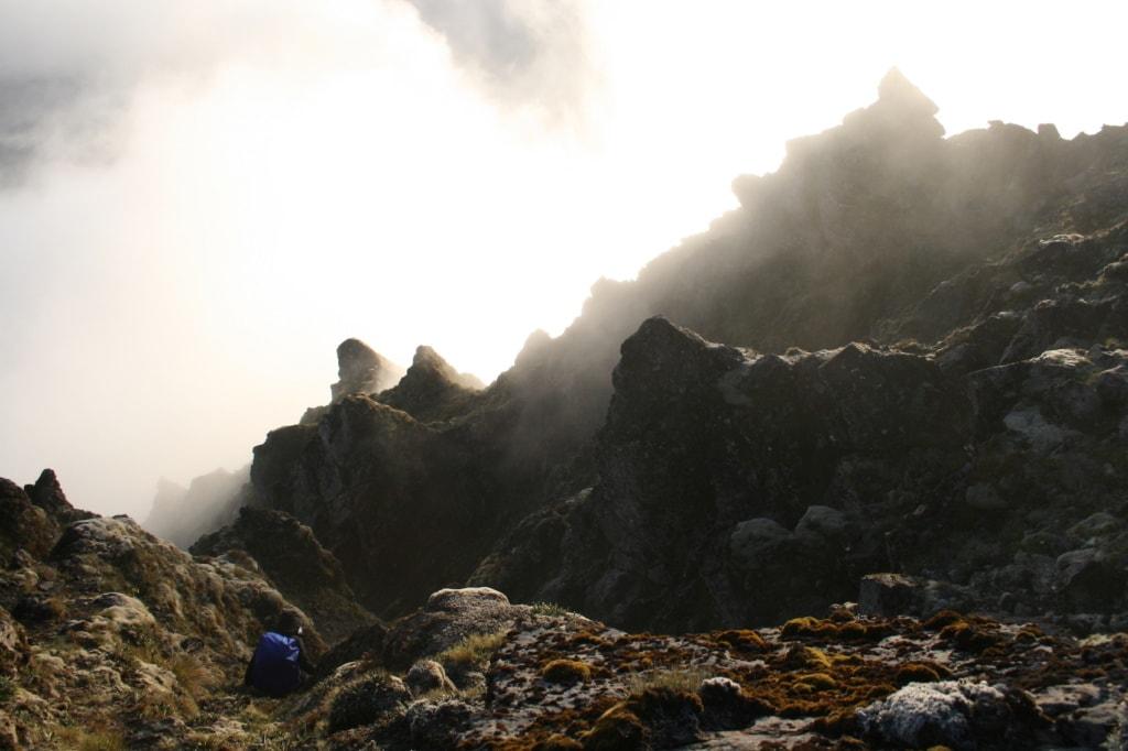 Über den Wolken ragt der Gipfel des Hikurangi in Neuseeland empor - der Aufstieg ist nichts fürs schwache Nerven.
