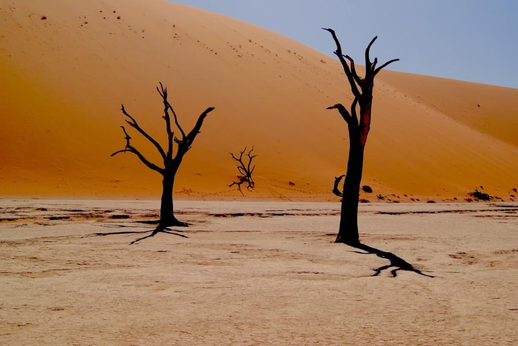 Sossusvlei in Namibia ist eine der spektakulärsten Wüsten der Welt.