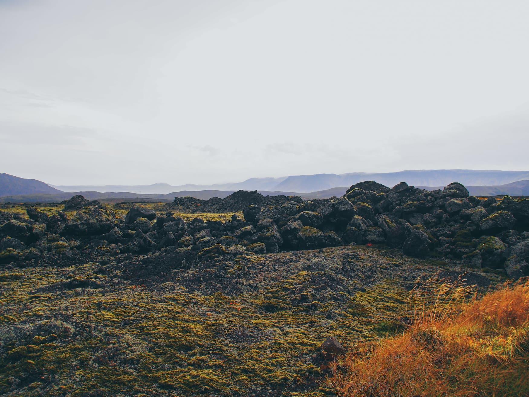 Raue Mondlanschaften auf Island sind mit Moos überzogen
