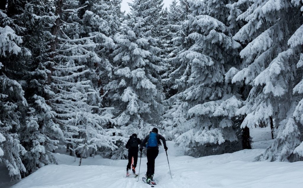 Skifahrer im Wald in Frankreich