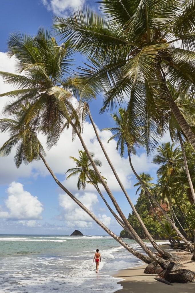 Willkommen im Kempinski Resort auf Dominica!