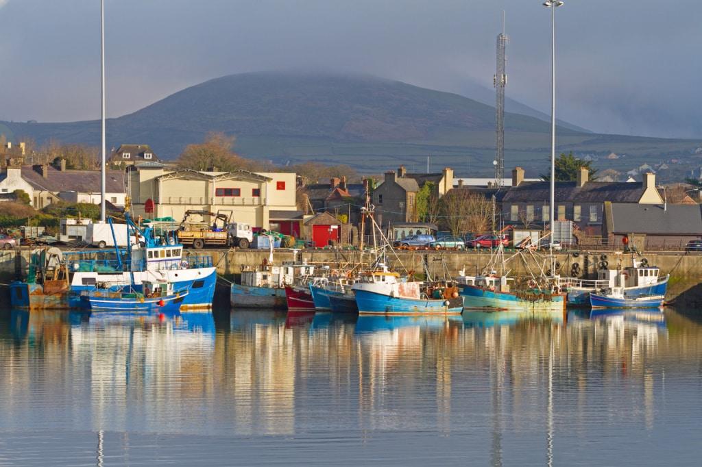 Seelenruhig schaukeln die Fischerboote im Hafen von Dingle.