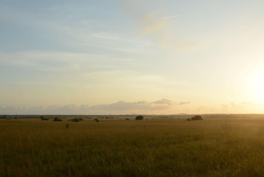 Blick auf Landschaft in Mosambik