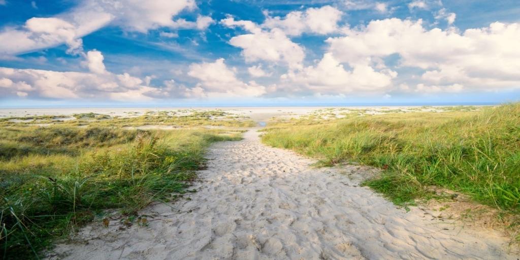 Menschenleerer Strand auf Langeook