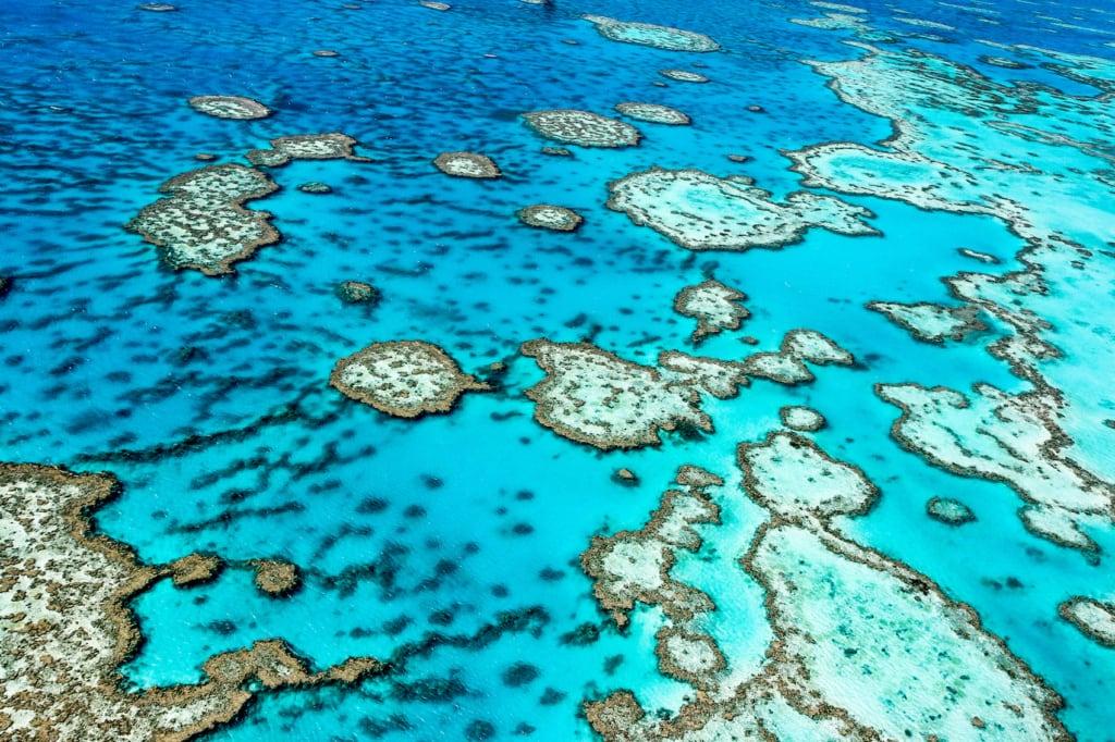 Das Great Barrier Reef in Australien ist das größte Korallenriff der Welt.