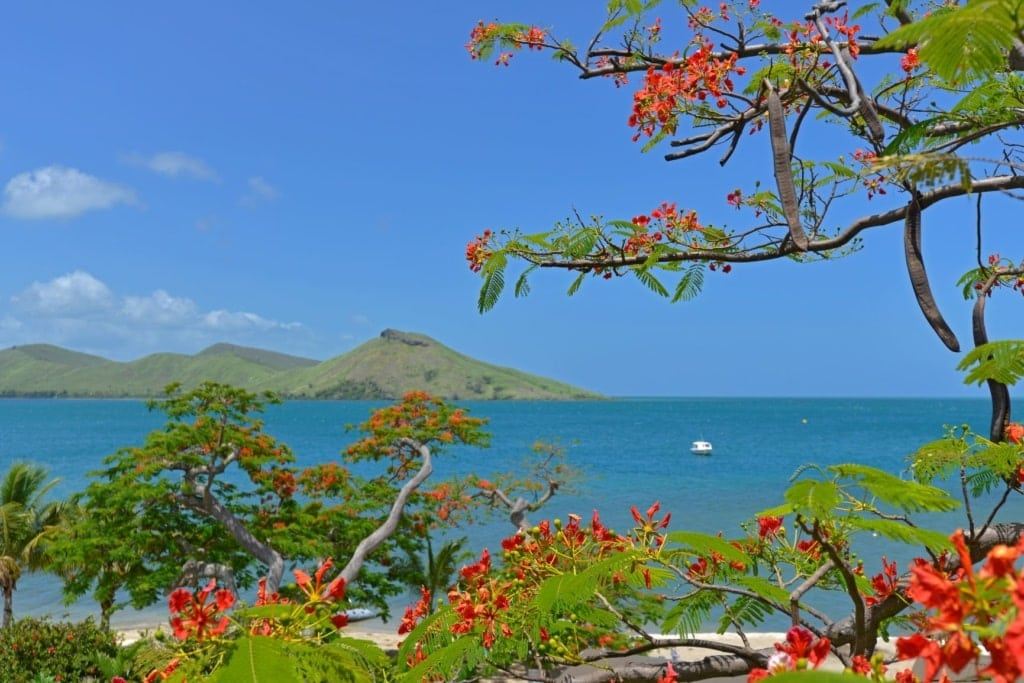 Landschaft, Pazifik, Fiji-Inseln, Veti Levu