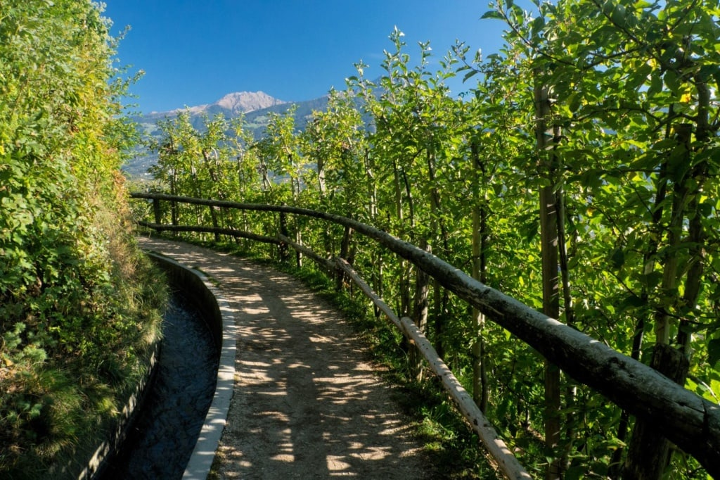 Markinger Waalweg in Südtirol