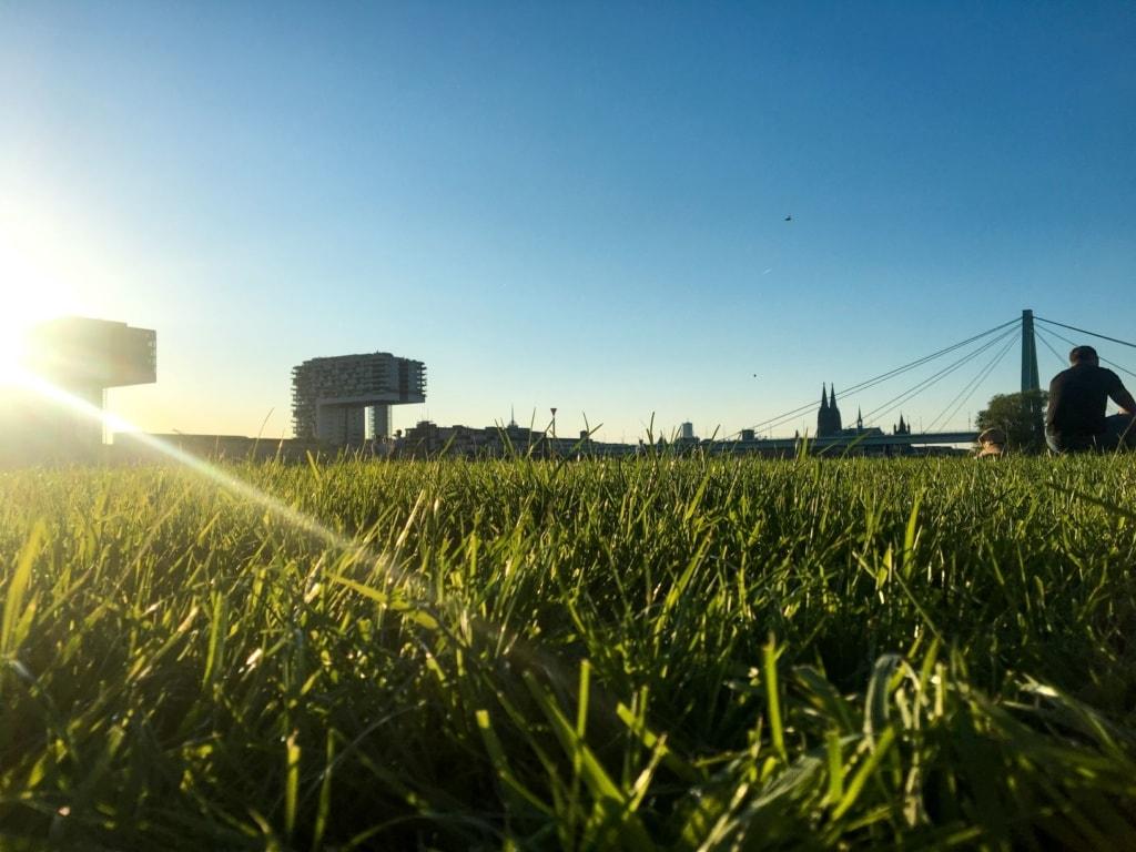 Blick von den Poller Wiesen auf den Rheinauhafen und den Dom