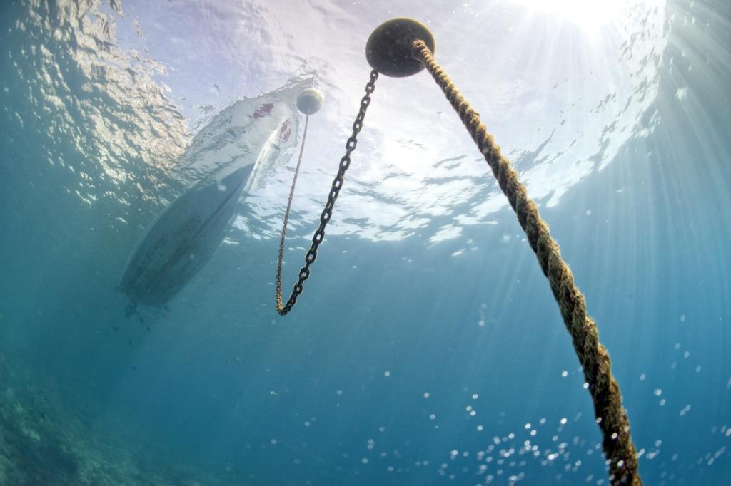 Ausflugsboote können zur Korallenbleiche beitragen.