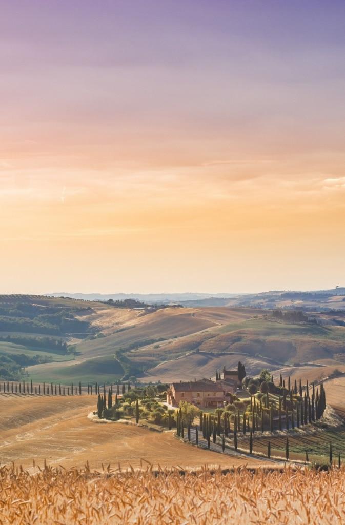 Backend um die Welt: Focaccia aus Italien!