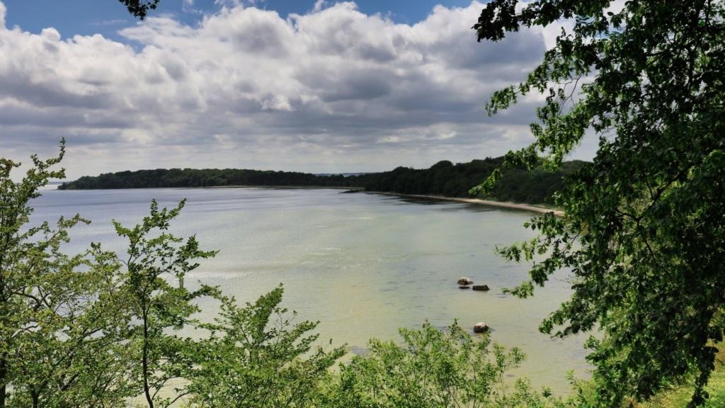 Natur auf der Insel Vilm