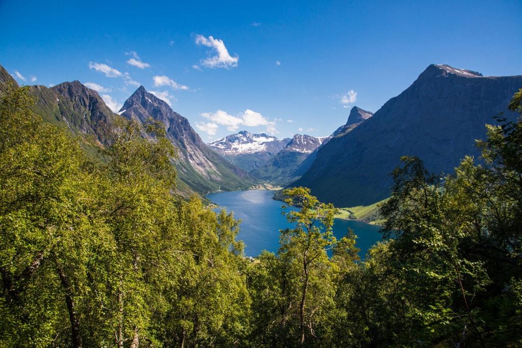 Blick in den wunderschönen Hjorundfjord mit Bäumen und Bergen